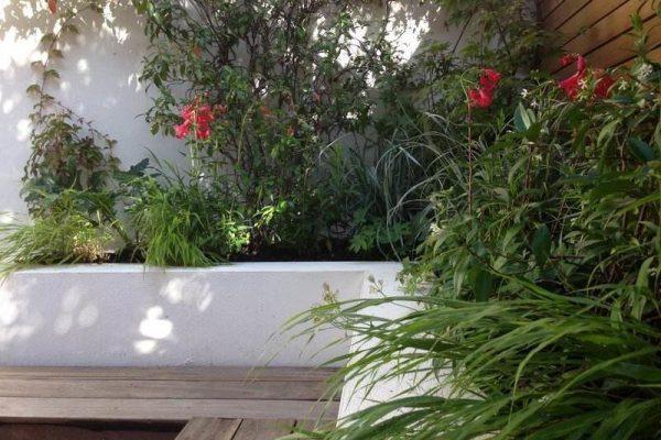 childs_hill_london_courtyard_garden_1