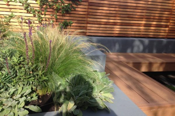 Shirehampton garden raised bed and ornamental grasses