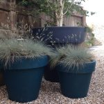 Three blue oversized planters in a walled garden