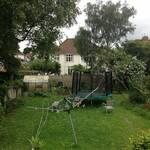 Before shot of garden in Henleaze Bristol