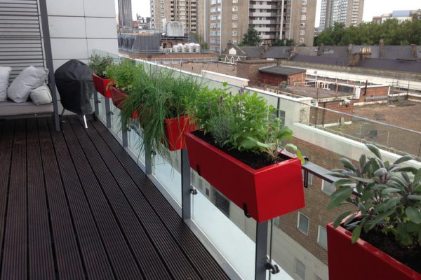 Roof Terrace Islington with herb planters over railing
